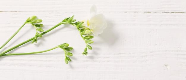 白い木製のテーブルのフリージアの花