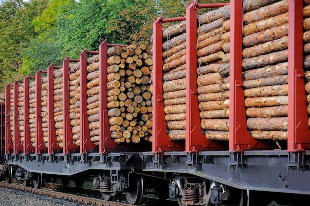 소나무 줄기가 달린화물 열차