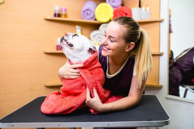French bulldog at grooming salon having bath.
