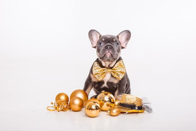 紳士のカーニバルの蝶のフレンチブルドッグの子犬と白い、新年に分離されたクリスマスツリーのおもちゃ