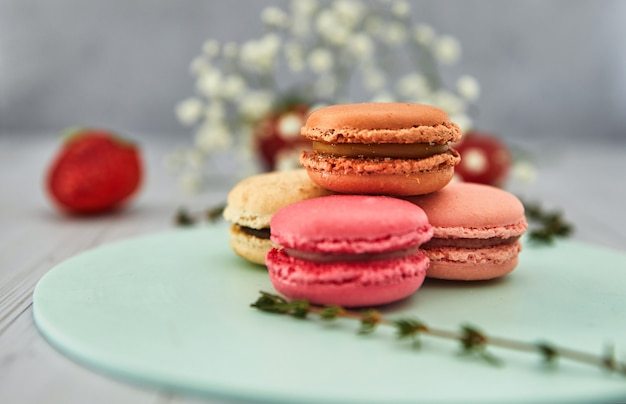 French colorful macaroons.