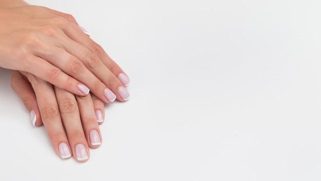 프랑스 매니큐어. 손톱 복사 공간, 배너, 와이드 포맷 흰색 배경에 젤 폴란드어로 덮여 있습니다. 위장베이스가있는 천연 매니큐어. 여성의 손을 가까이, 미용실 개념.