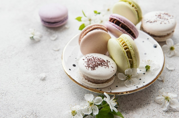 French sweet macaroons colorful variety on a concrete background with spring blossom