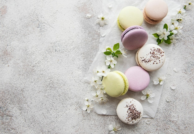 French sweet macaroons colorful variety on a concrete surface with spring blossom