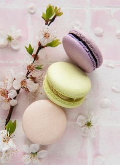 French sweet macaroons colorful variety on a pink tile background with spring blossom Premium Photo