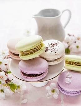 French sweet macaroons colorful variety on a pink tile background with spring blossom