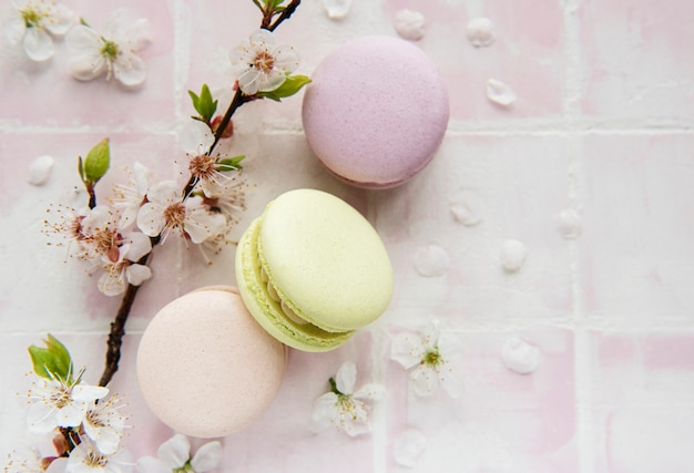 French sweet macaroons colorful variety on a pink tile surface with spring blossom