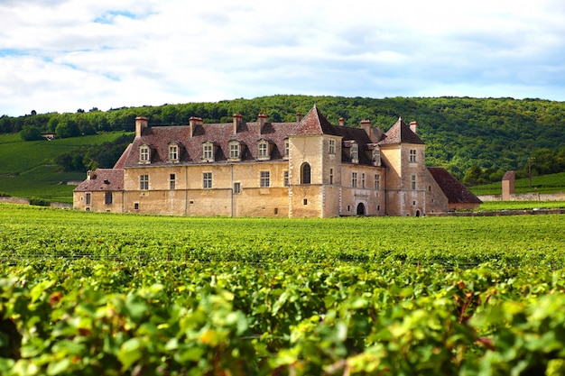 French vineyard chateau