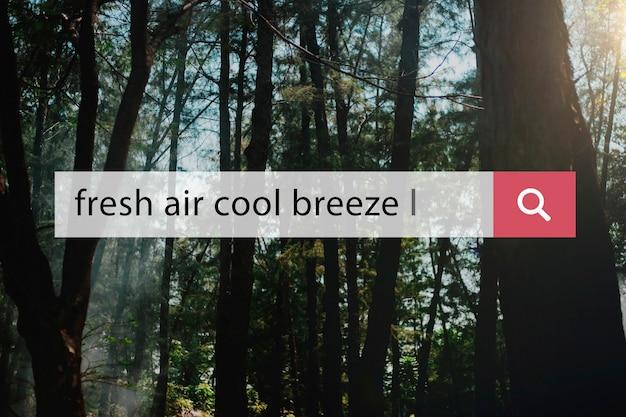 Rilassamento per le vacanze di vacanza con brezza fresca all'aria fresca