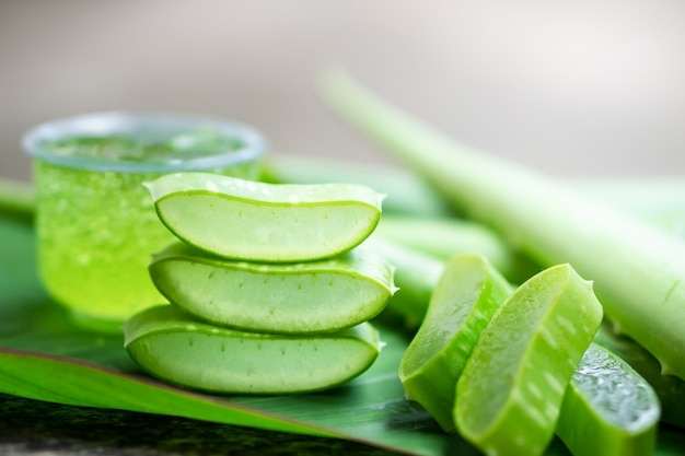 Fresh aloe vera leaves and slice on  wooden table
