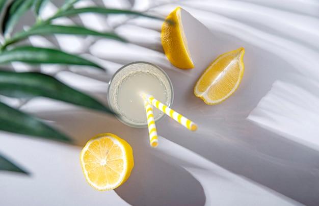 硬い朝の影のあるライトテーブルにレモンとパームブランチを添えたフレッシュで冷たいレモネードグラス