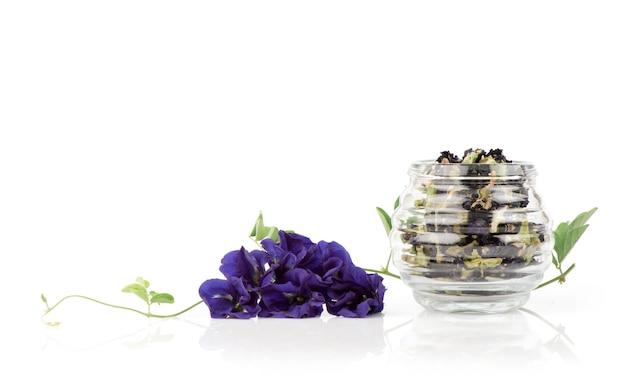 新鮮で乾燥した蝶エンドウ豆の花とお茶が分離されました。