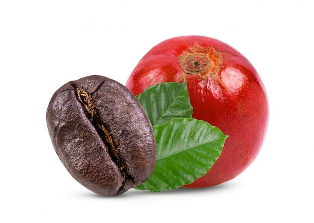 白いテーブルの上の葉で新鮮な乾燥したコーヒー豆。