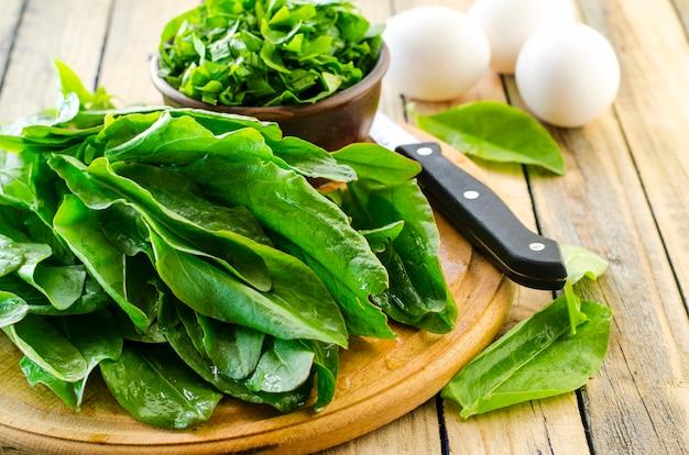 スイバのクローズアップの新鮮な緑の葉