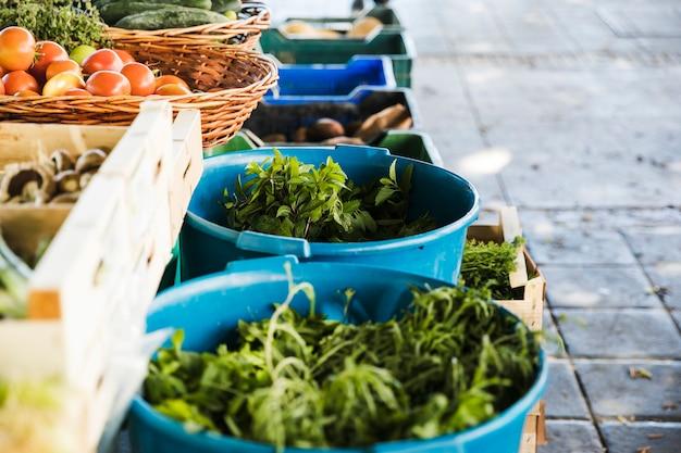 농민 시장에서 신선하고 유기농 야채