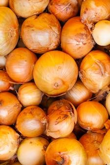 新鮮で熟した玉ねぎの背景