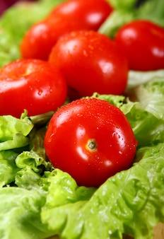 フレッシュでウェットなトマト