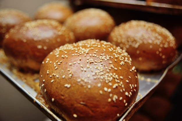 Fresh appetizing buns with sesame seeds on a metal baking sheet close up in the process of baking
