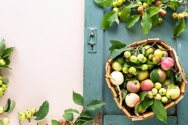 녹색 배경에 바구니에 신선한 사과. 가을 수확. 평면도. 공간을 복사하십시오.