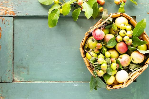 緑のバスケットに新鮮なリンゴ。秋の収穫。上面図。スペースをコピーします。