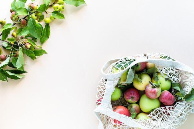 Свежие яблоки в сетке хозяйственной сумки. никаких отходов, никаких пластиковых концепций. здоровое питание и детокс. осенний урожай. плоская планировка, вид сверху.