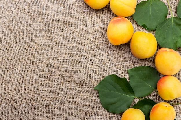 Fresh apricots on burlap sack on table