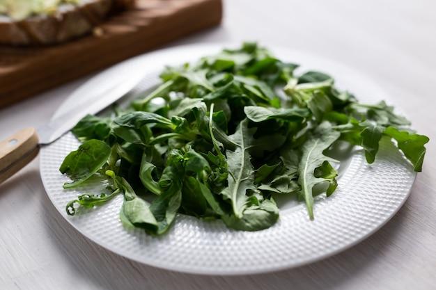 다이어트 또는 해독 또는 채식의 접시 개념에 신선한 arugula 샐러드