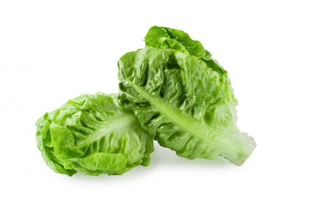Fresh baby cos lettuce isolated over the white background.
