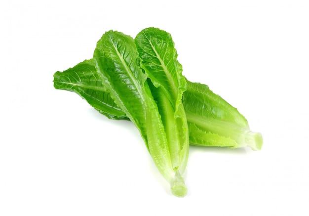 Свежий ребенок cos (салат) на белом фоне