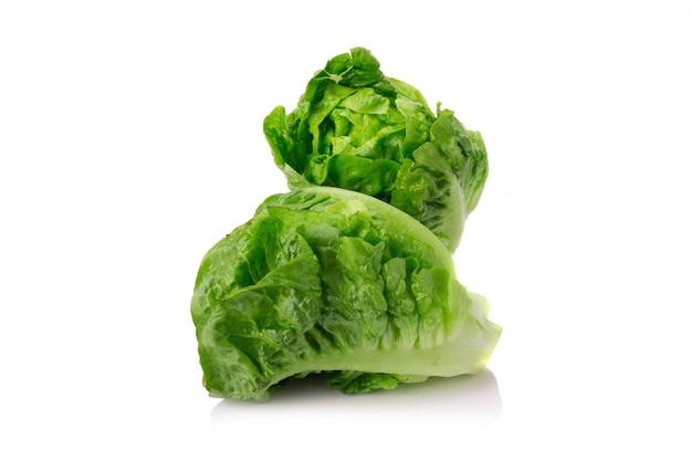 Fresh baby cos (lettuce) on white background