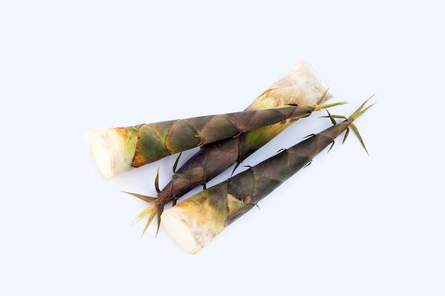 新鮮な竹は白い背景を撃ちます。