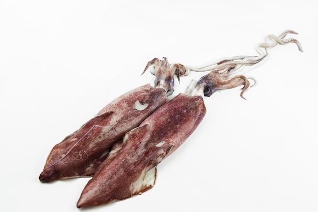 Fresh banana squid isolated on white background