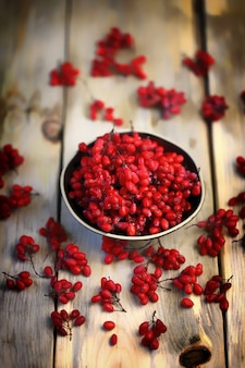 ボウルに新鮮なメギ。メギの赤い果実。