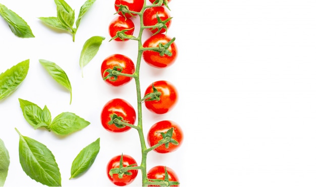 Fresh basil leaves with cherry tomatoes on white.
