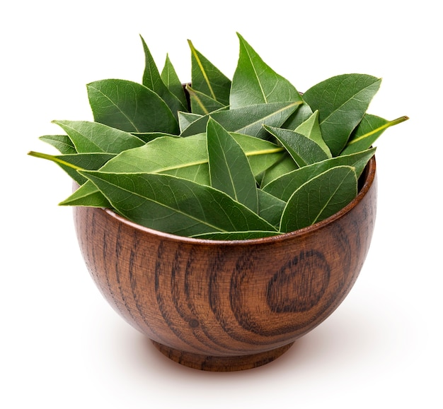 Fresh bay leaves in wooden bowl isolated on white background