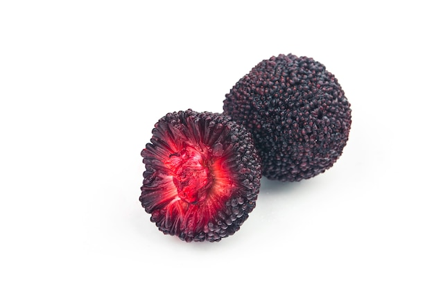 Bayberry fresco su sfondo bianco