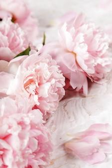 Fresh beautiful peony flowers