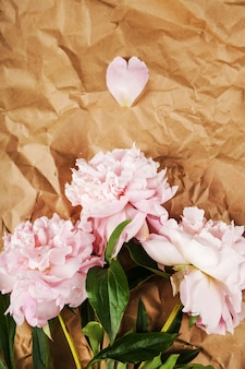 Fresh beautiful peony flowers
