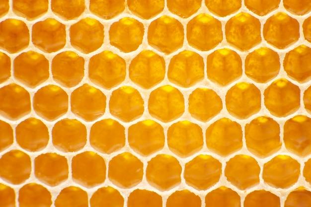 빗에 신선한 꿀벌 꿀. 자연 식품 배경 텍스처 프리미엄 사진