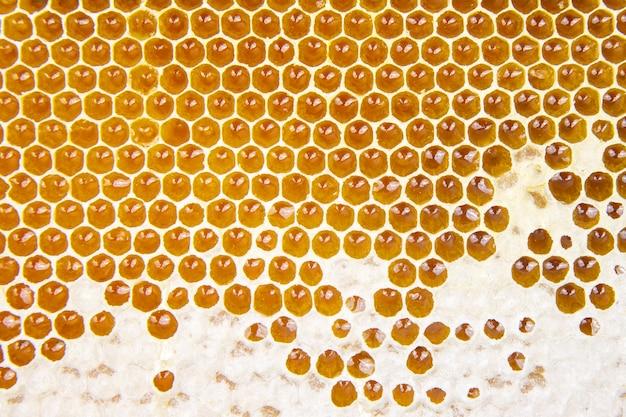 빗에 신선한 꿀벌 꿀. 자연 식품 질감