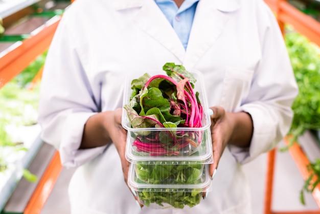 ホワイトコートで若いアフリカの女性農学者によって保持されているスタックの上のプラスチック容器に新鮮なビートの葉