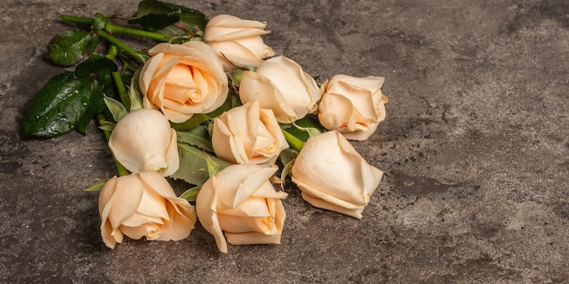 Fresh beige roses on textured stone concrete background. the festive concept for weddings, birthdays, march 8th, mother's, or valentine's day, banner