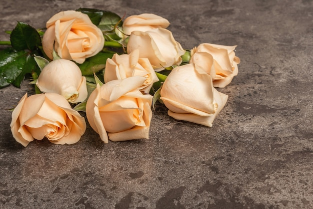 Fresh beige roses on textured stone concrete background. the festive concept for weddings, birthdays, march 8th, mother's, or valentine's day