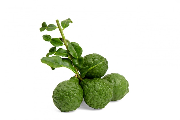 Fresh bergamot with leaf isolated on white background.herb