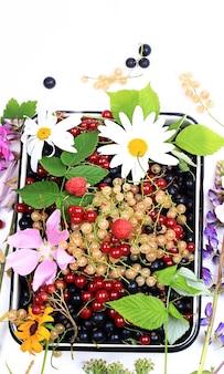 新鮮なベリーと花。夏のビタミンの背景