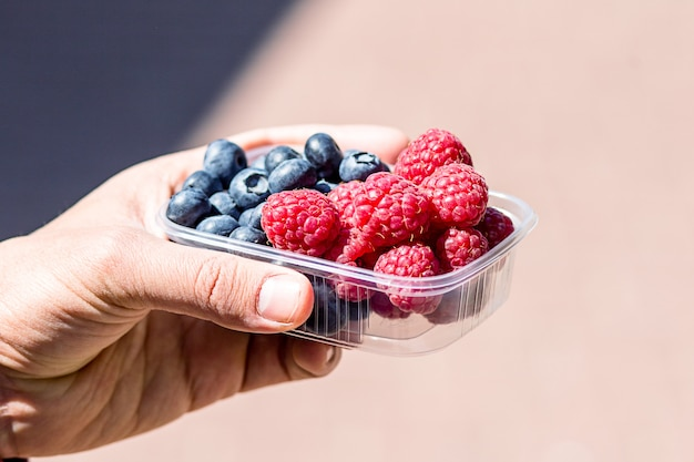 Fresh berries are packed in trays