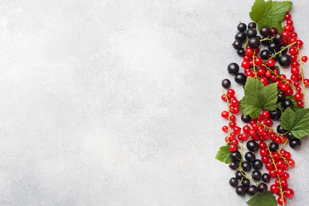 Fresh berries of black and red currants on gray table with copy space.