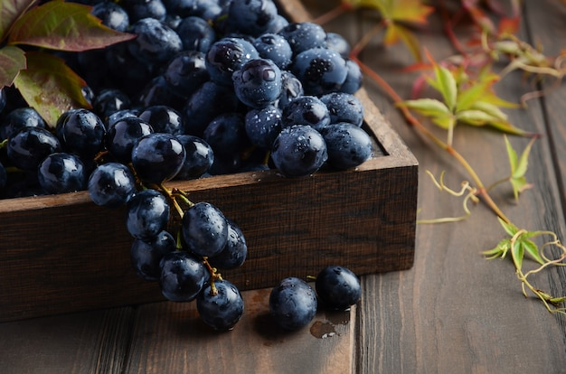 Fresh black grapes in dark wooden tray on wooden table.