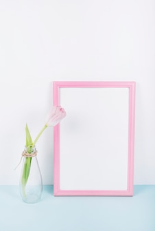 Fresh blooming tulip flower in transparent vase with pink border photo frame