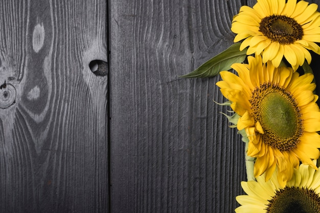 Fresh blossom beautiful sunflowers on wooden desk
